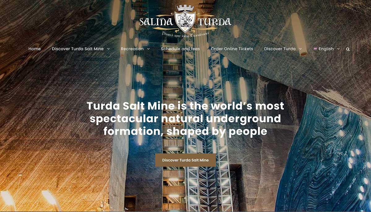 Website Turds Salt Mine